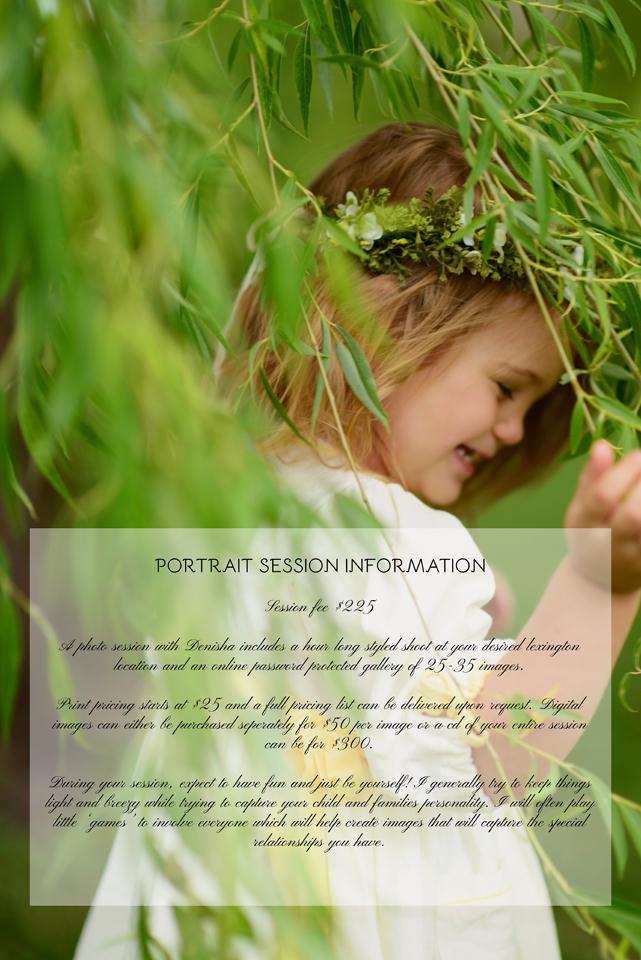 portraitsessioninfosmaller copy